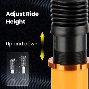 1. Adjustable Height